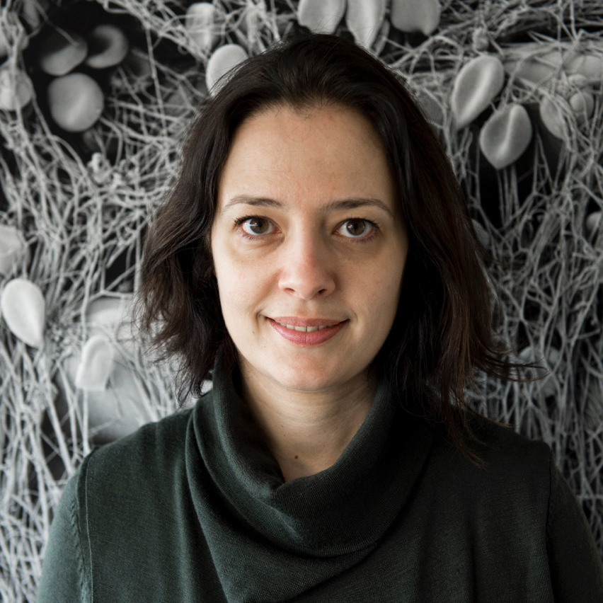 Profile photo of Associate Professor Maja Jagodic